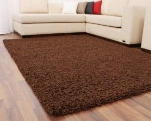 Teppich vorreinigen